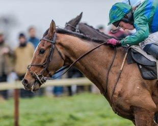 Close finish at Barbury Races Point to Point